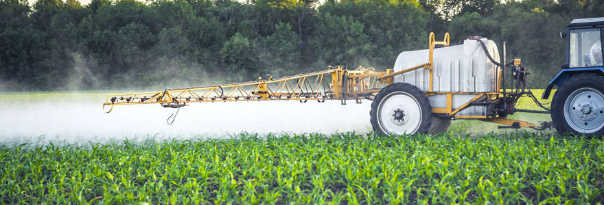 Engrais agricoles